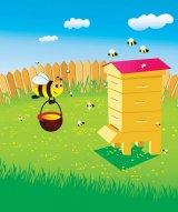 Minunea din borcanul cu miere: APISAN Forte