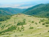 Muntele de aur - Piatra Tomii