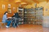 Leacuri de sănătate şi de iubire - Farmacia Domnului de la Mânăstirea Nera