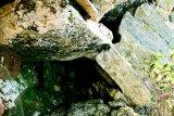 ZAMOLXE: Pe urmele marelui zeu