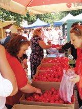 Festivalul roşiilor de la Izbiceni