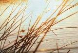 Ritualuri autumnale - În loc de depresie, relaxare