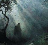 Capitala mondială a paranormalului: Pădurea Hoia-Baciu
