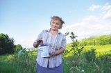 Pădurea de afini a doamnei Corina