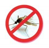 Bârfe despre ţânţari