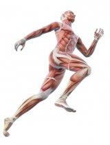 Sportul - cel mai bun medicament
