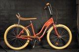 Bicicletele Pegas se întorc
