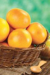 Un fruct în Cartea recordurilor - GREPFRUITUL