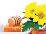 De pe flori, pe obraz: Mierea şi suratele ei