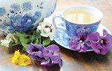 Din reţetele domnului farmacist Bobaru: Vestitorii primăverii - PANSELUŢELE