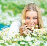 Floarea frumuseţii: Muşeţelul