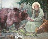 Crâmpeie din grădina raiului