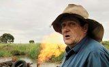 TIFF 2014: Ecologia, vedetă pe marele ecran