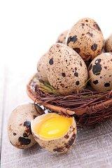 Ouăle de prepeliţă