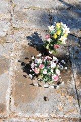 KÂRŞEVAN, sfântul florilor
