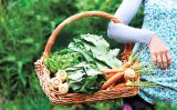 Sănătate cu alimente - HEMOROIZII