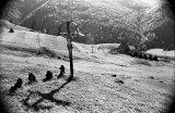 Vacanţele unui fotograf: Arh. ANDREI PANDELE