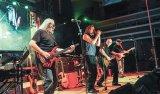 PRO MUSICA 41 Live in Timişoara