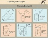 Remedii populare împotriva muşcăturilor de insecte