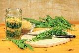 Din reţetele domnului farmacist Bobaru: Sănătate cu frunze verzi (II) - PĂTLAGINA şi NUCUL