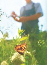 Cel mai tare medicament anti-stres: Întoarcerea la natură