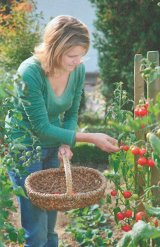 Cel mai tare medicament anti-stres: Intoarcerea la natura