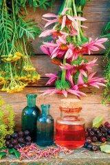 Din reţetele domnului farmacist Bobaru: Vinuri medicinale (1)