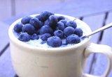 Sănătate cu alimente - Pietrele la vezica biliară şi la rinichi