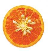 Seminţele de grepfruit