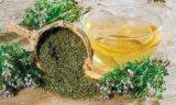 Remedii din plante contra tusei