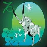 CALENDAR ZODIACAL - CAPRICORN (21 decembrie - 19 ianuarie)