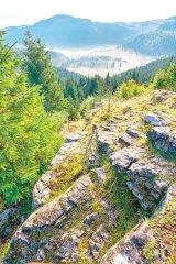 Leacuri miraculoase din Apuseni: PULBERILE DE PLANTE