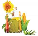 Uleiurile alimentare - otravă sau medicament?