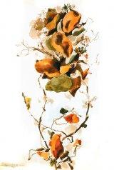 Dedicaţie la o floare - Grădina cu minuni