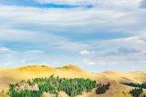 Zânele de pe Valea Someşului