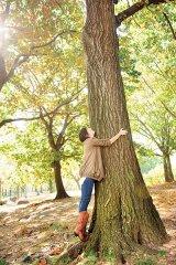 Cum să te îndrăgosteşti de un copac