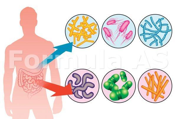 bacterii intestinale pentru a vă ajuta să pierdeți în greutate)