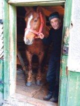 Caii biblici din Vama