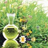 Ce nu ştiaţi despre terapia florală Bach?