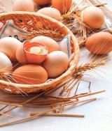 Alimentul-medicament pentru a trăi mult şi bine - Ou crud cu pulbere de merişoare