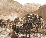 Poveşti huţule - Testamentul nescris al moşului Oleaca