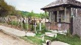 Un sat pe ultimul drum: FIRIJBA