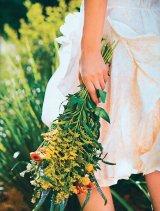 Din reţetele domnului farmacist Bobaru: Frumuseţe cu ierburi şi flori