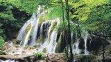 Splendori în Banatul Montan: Cheile Nerei