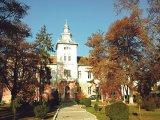 SORIN NICOLAE MEGHEŞAN - Primarul oraşului Târnăveni, jud.Mureş -