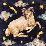Zodiacul coşmarurilor