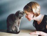 Înţelegeţi limbajul pisicilor?
