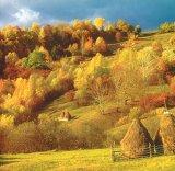 Toamnă la Valea Verde