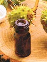 Puterea vindecătoare a copacilor: CASTANUL SĂLBATIC (Aesculus hippocastanum)