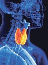Tulburările tiroidei